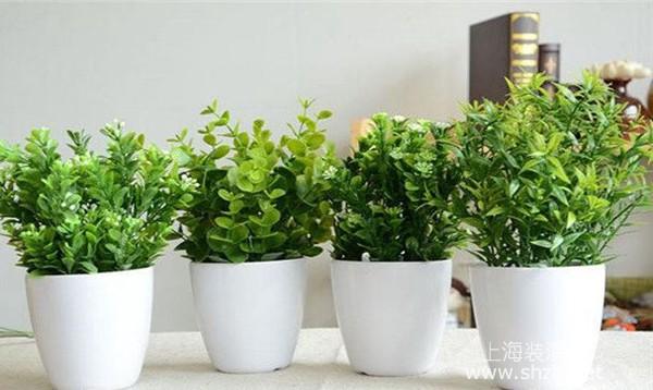 秋冬季节室内干燥怎么办?简单的室内干燥解决方法分享