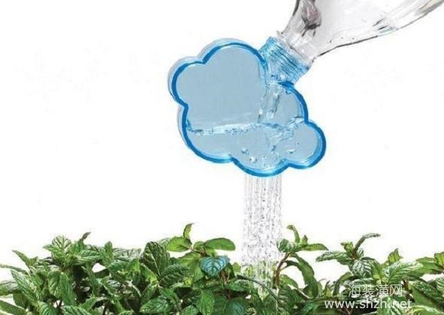盆栽薄荷怎么养,做到这5点,整个夏天都能喝到新鲜的薄荷水
