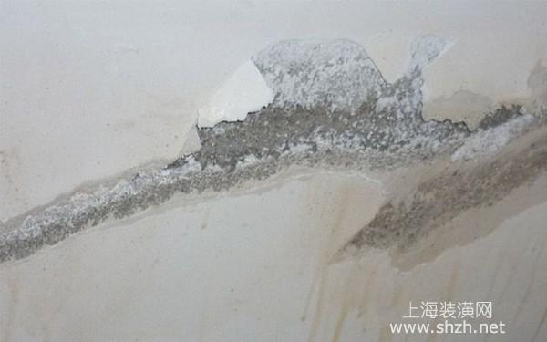 卫生间墙面渗水怎么处理?解读导致墙面潮湿的原因与解决方案