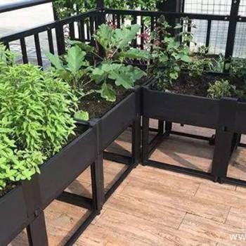 请收藏这份阳台绿化布置指南,新手小白也能打造专属绿植阳台